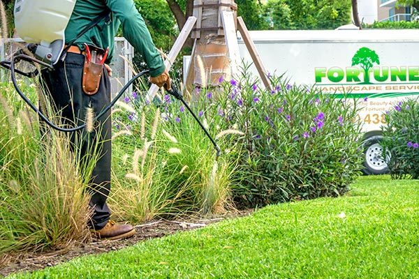 Fertilization & Weed Control | Marco Island Lawn Services Provided by Fortune's Lawn, Land & Tree Service