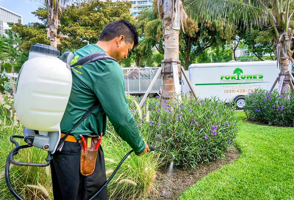 Greenscape Licensed Fertilization Professionals | Fortune's Lawn, Land & Tree Service