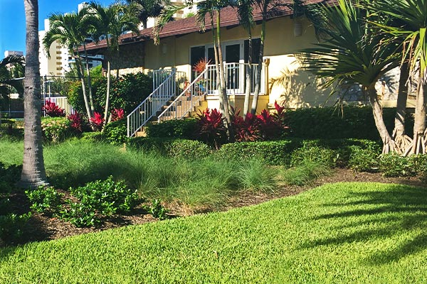 Inspections | Marco Island Land Services Provided by Fortune's Lawn, Land & Tree Service