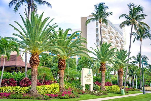 Landscape Design | Marco Island Land Services Provided by Fortune's Lawn, Land & Tree Service