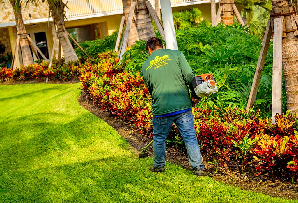 Mowing & Edging To Maintain A Healthy Yard | Fortune's Lawn, Land & Tree Service on Marco Island, FL