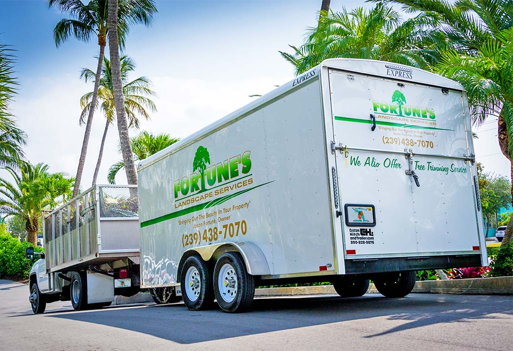Marco Island Landscape Inspections & Examinations | Fortune's Lawn, Land & Tree Service