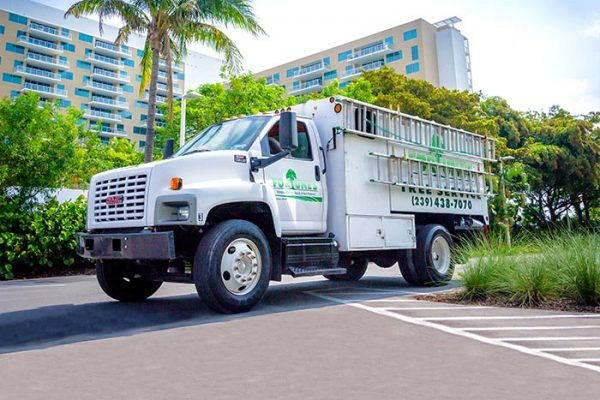 Who We Service | Fortune's Lawn, Land & Tree Service, A Marco Island Landscaping Company